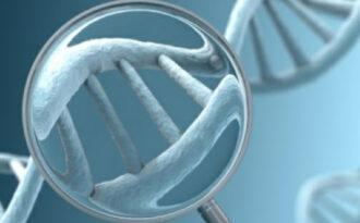 Генетическое обследование